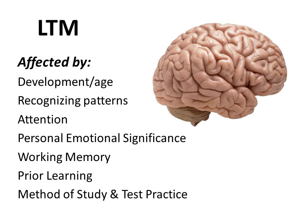 LTM Affected by: Development/age Recognizing patterns Attention Personal Emotional Significance Working Memory Prior Learning Method of Study & Test Practice