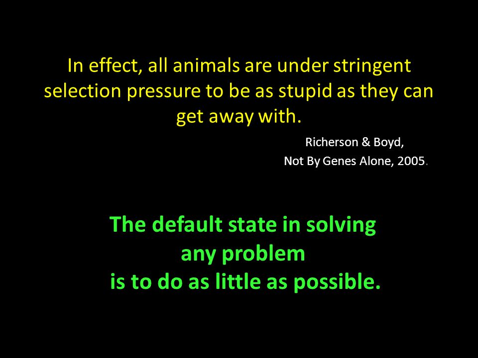 In effect, all animals are under stringent selection pressure to be as stupid as they can get away with.