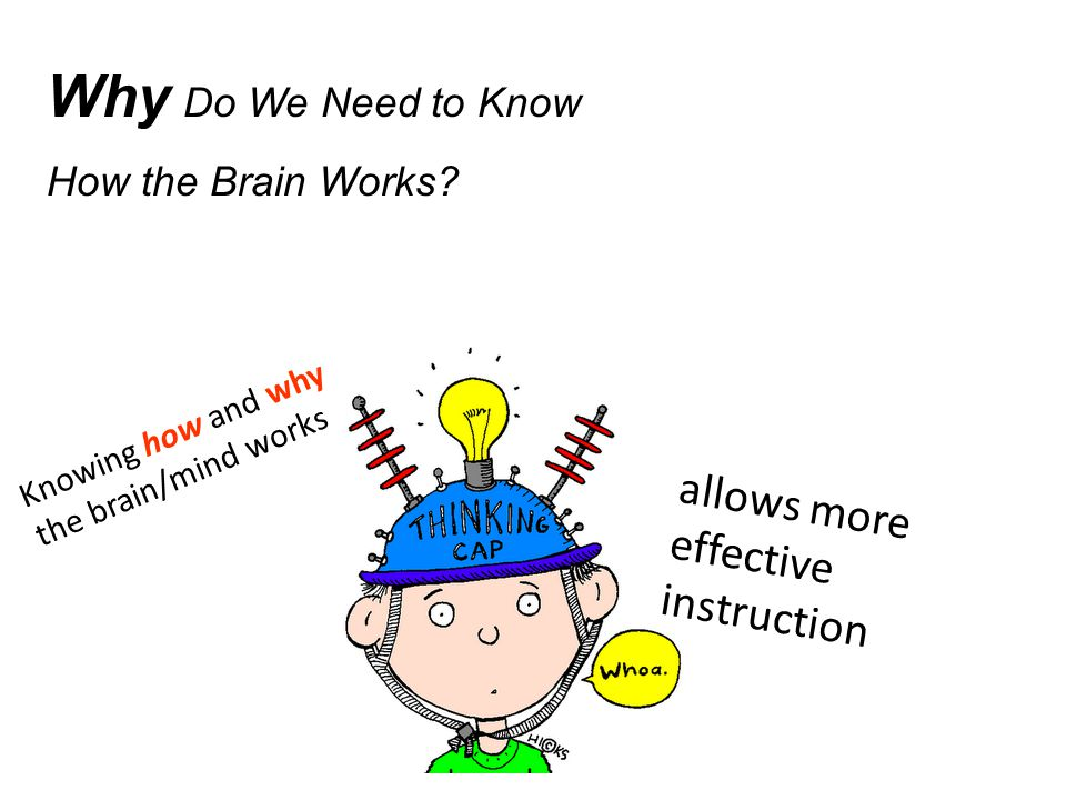 The Brain is Plastic (Neuroplasticity) To learn It Must Change Learning physically changes the brain