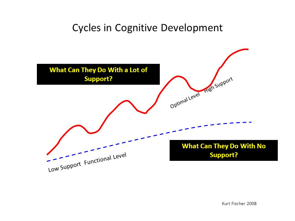 Cycles in Cognitive Development Low Support Functional Level Optimal Level High Support Skill Level Kurt Fischer 2008 Direct teacher support What Can They Do With No Support.
