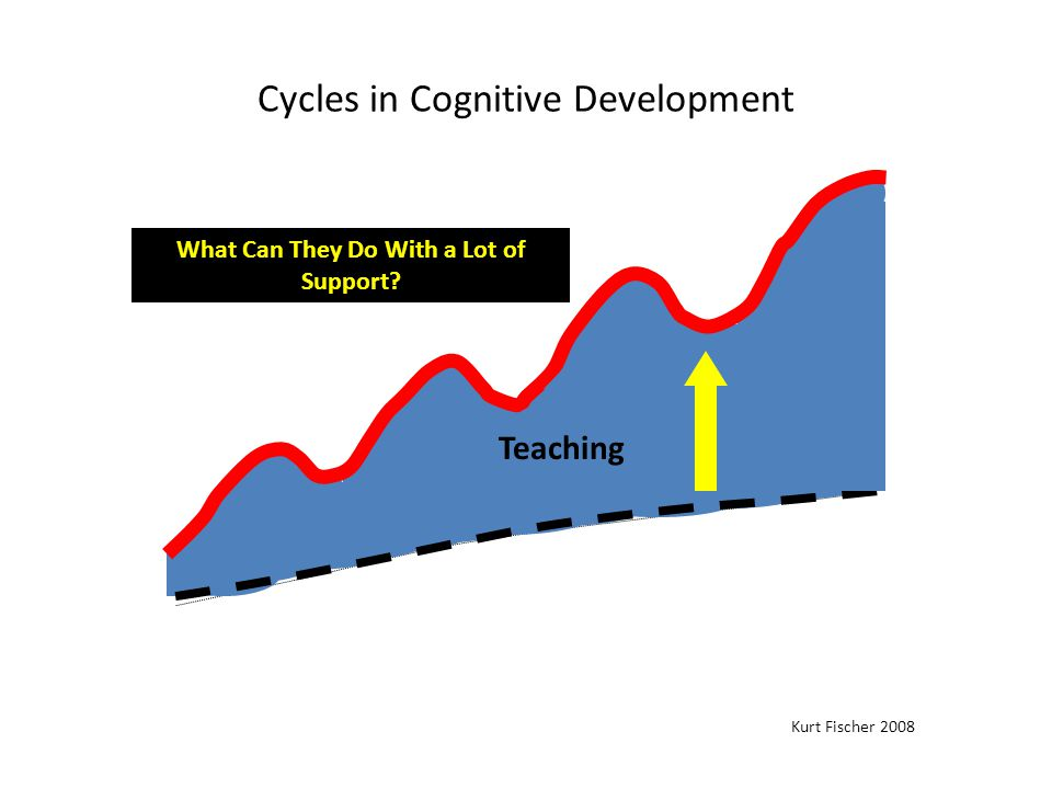 Cycles in Cognitive Development Skill Level Kurt Fischer 2008 Direct teacher support What Can They Do With a Lot of Support.