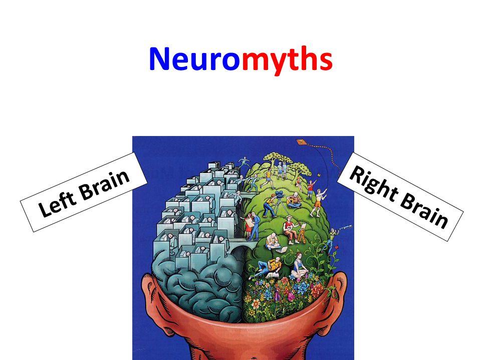 Neuromyths Right Brain Left Brain