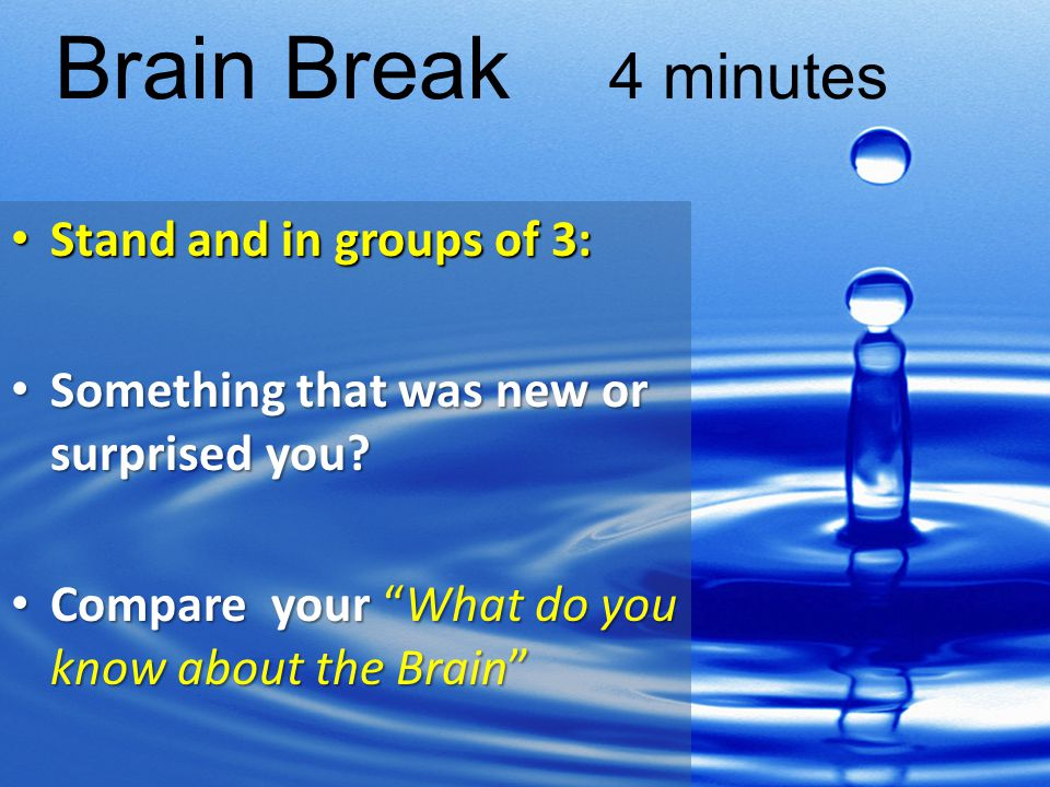 Brain Break 4 minutes Stand and in groups of 3: Stand and in groups of 3: Something that was new or surprised you.