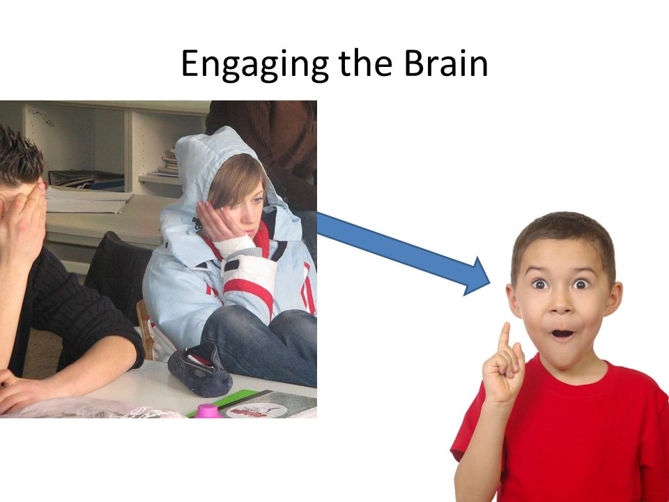 Engaging the Brain