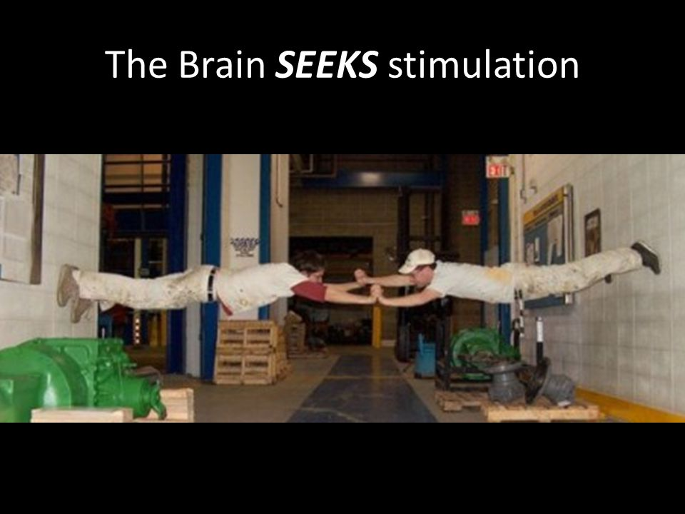 The Brain SEEKS stimulation If you don't provide it, the students find it for themselves