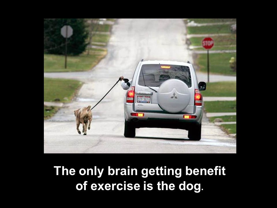 The only brain getting benefit of exercise is the dog.