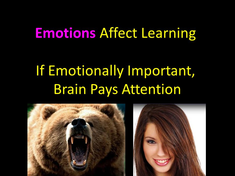 Emotions Affect Learning If Emotionally Important, Brain Pays Attention