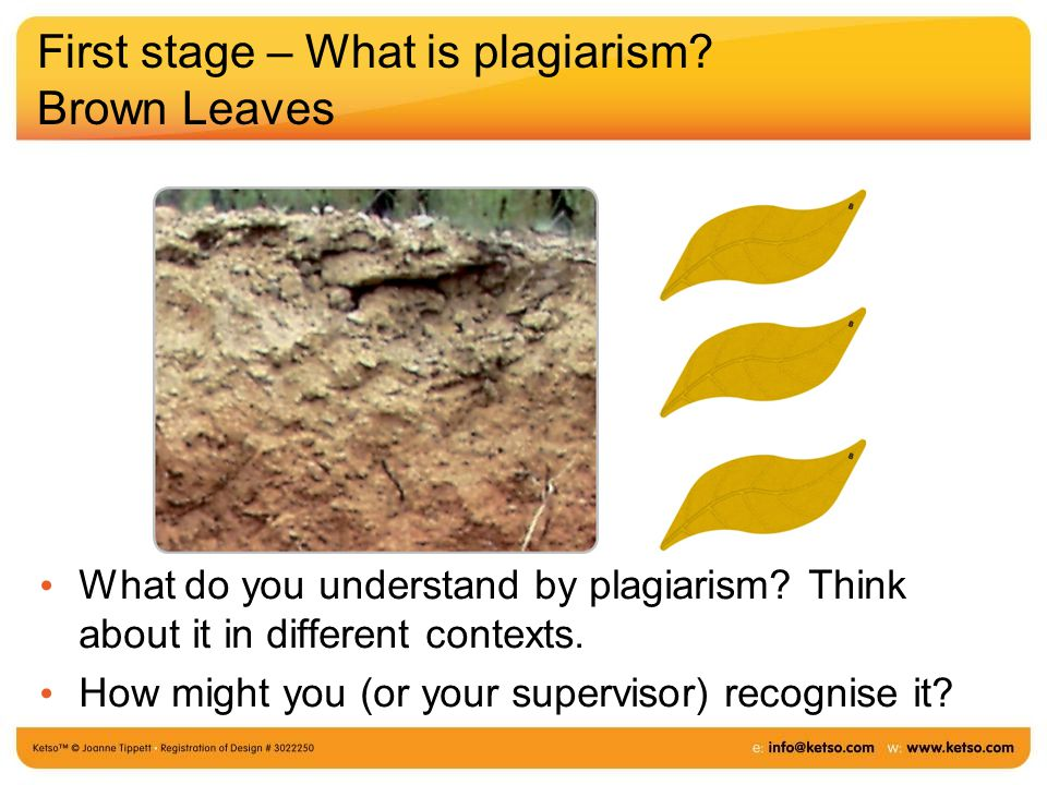 First stage – What is plagiarism. Brown Leaves What do you understand by plagiarism.