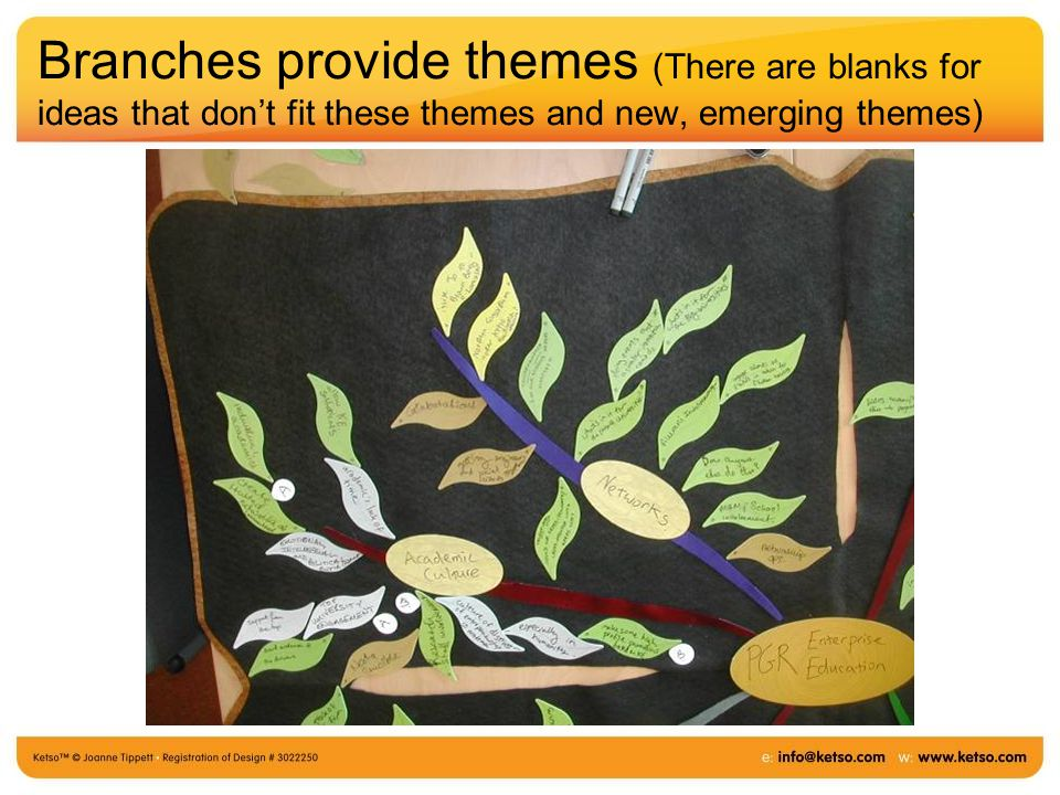 Branches provide themes (There are blanks for ideas that don't fit these themes and new, emerging themes)