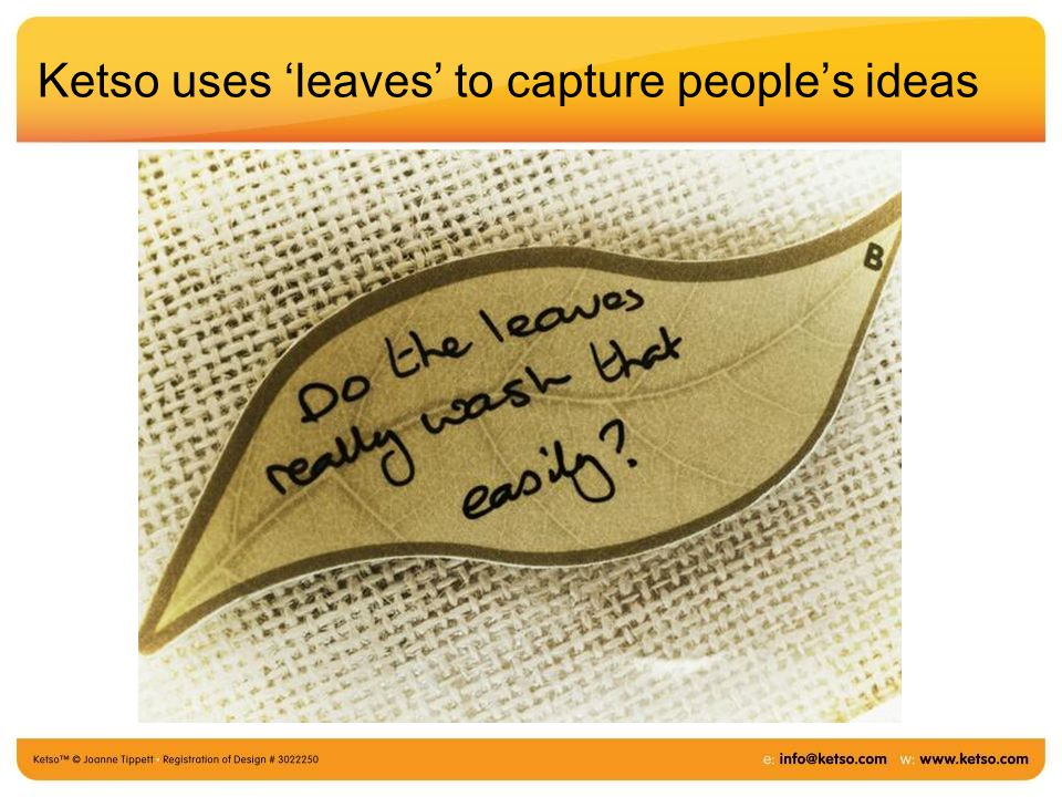Ketso uses 'leaves' to capture people's ideas