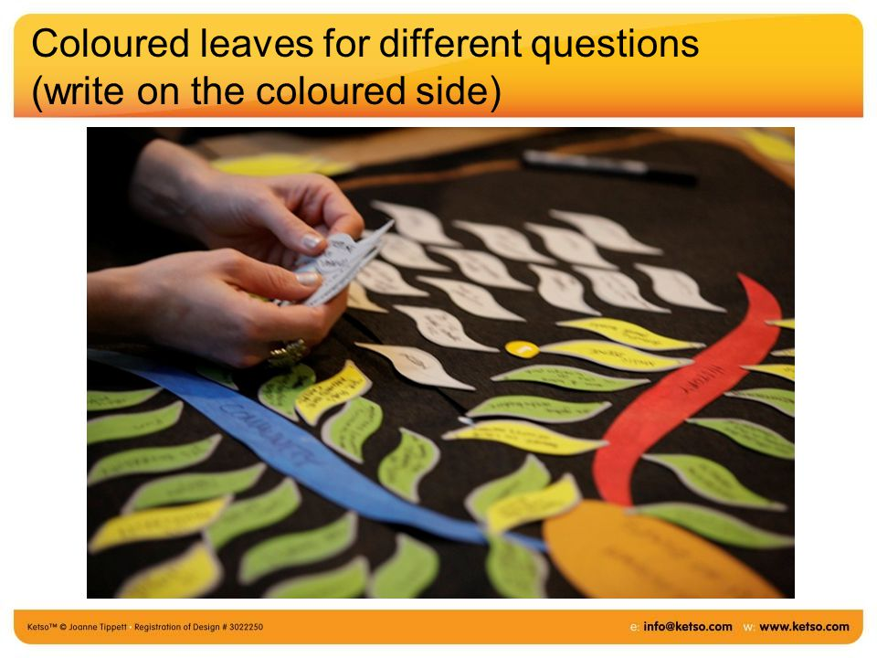 Coloured leaves for different questions (write on the coloured side)