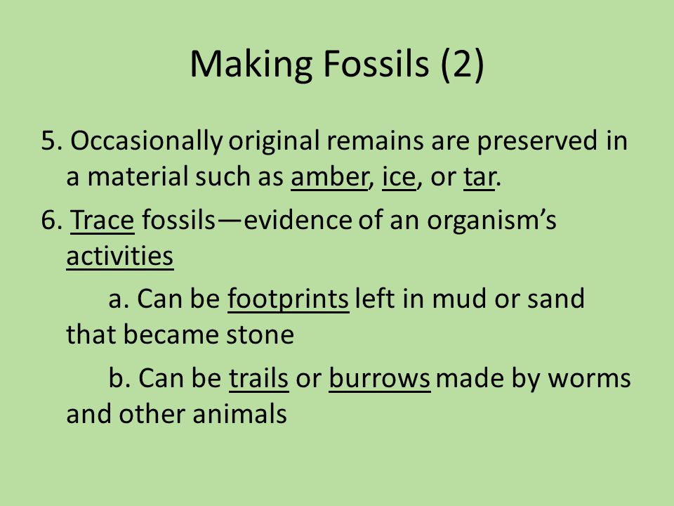 Making Fossils (2) 5. Occasionally original remains are preserved in a material such as amber, ice, or tar. 6. Trace fossils—evidence of an organism's