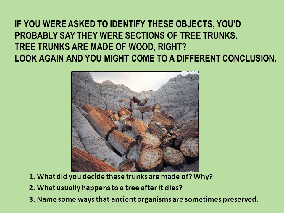 DISCUSSION QUESTION: Why are original remains rarely found.