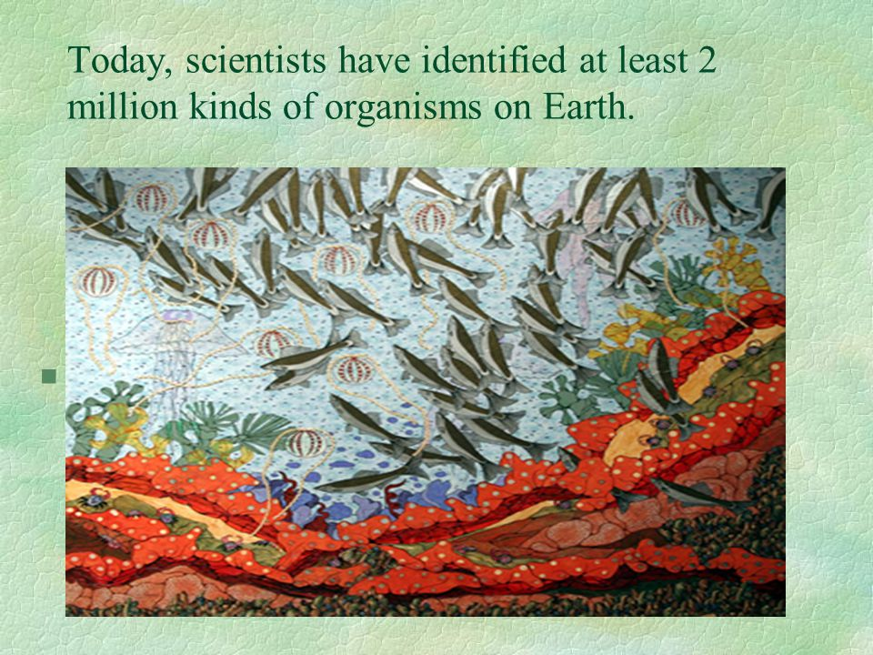 Today, scientists have identified at least 2 million kinds of organisms on Earth. §