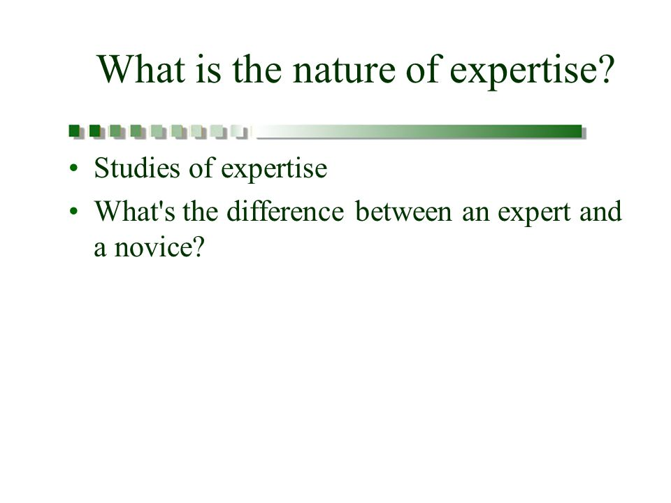 What is the nature of expertise.