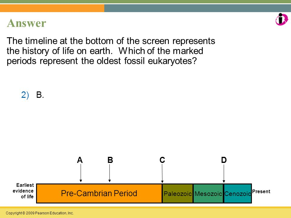 Copyright © 2009 Pearson Education, Inc. Answer The timeline at the bottom of the screen represents the history of life on earth. Which of the marked