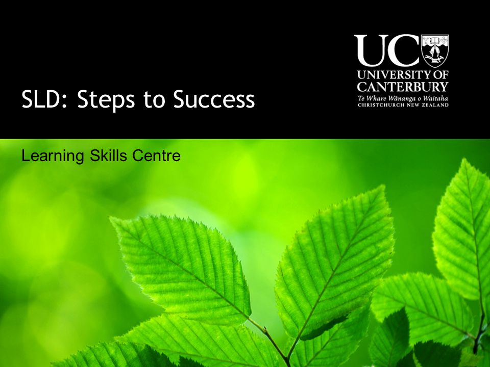 SLD: Steps to Success Learning Skills Centre