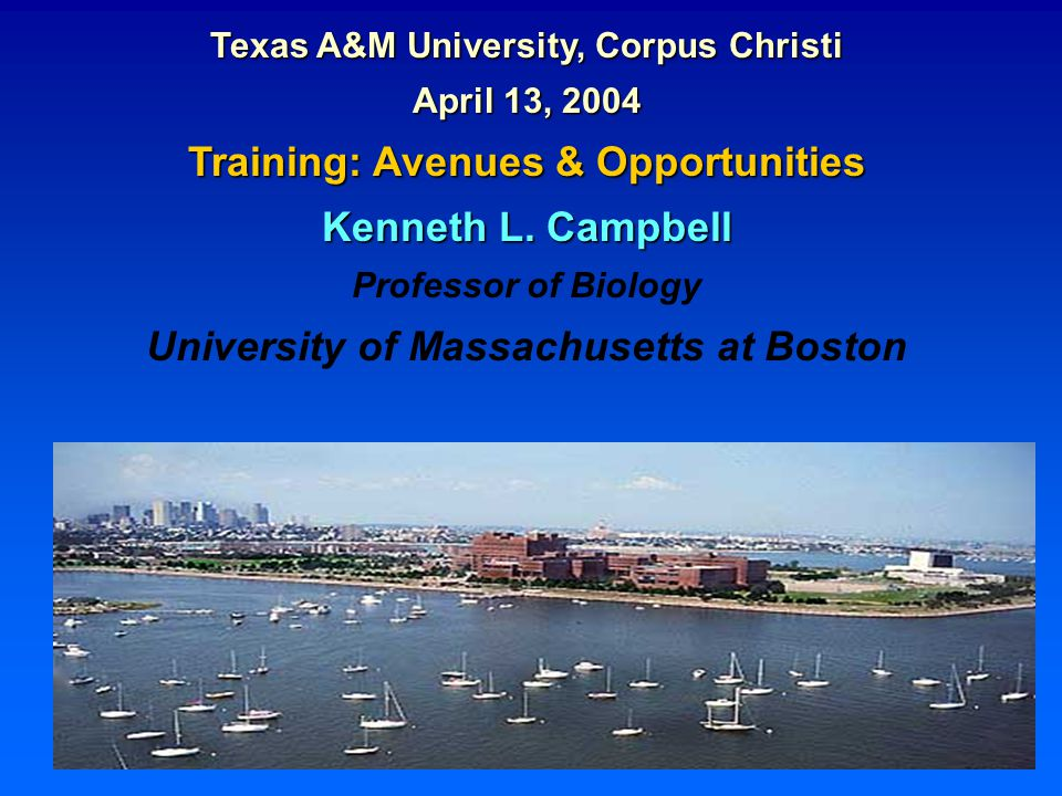 Texas A&M University, Corpus Christi April 13, 2004 Training: Avenues & Opportunities Kenneth L.