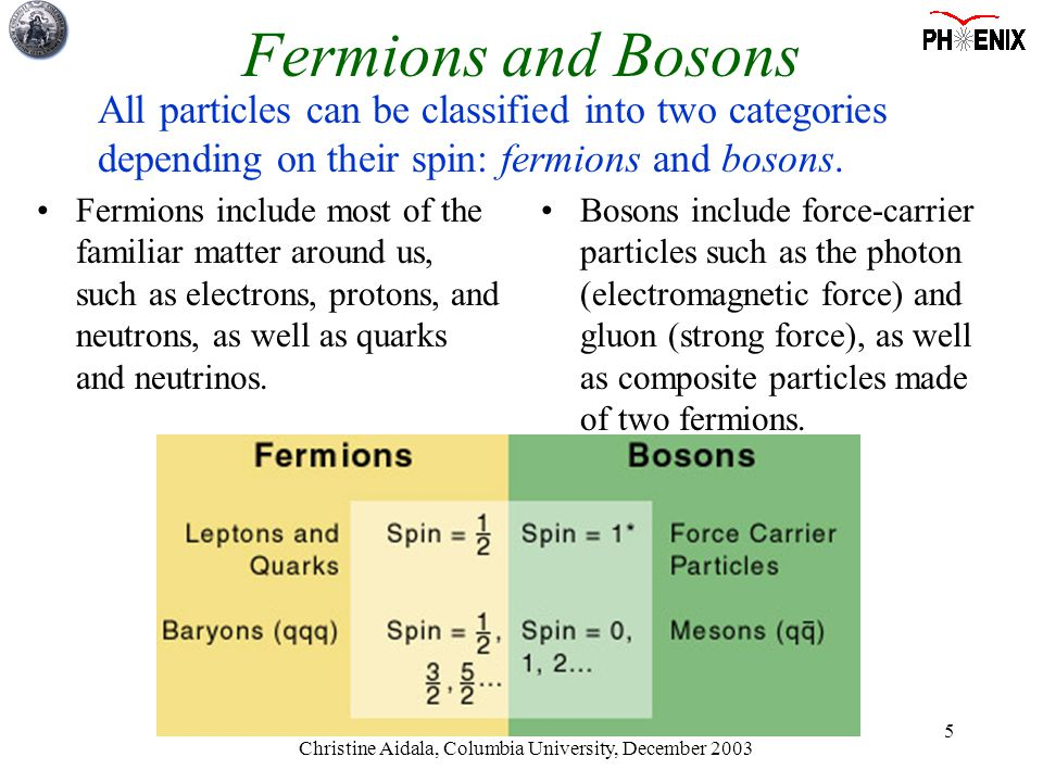 Christine Aidala, Columbia University, December 2003 5 Fermions include most of the familiar matter around us, such as electrons, protons, and neutrons, as well as quarks and neutrinos.