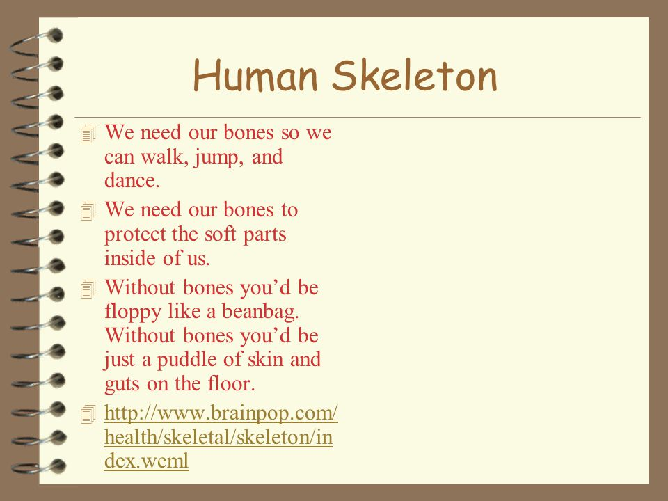 Human Skeleton 4 We need our bones so we can walk, jump, and dance.