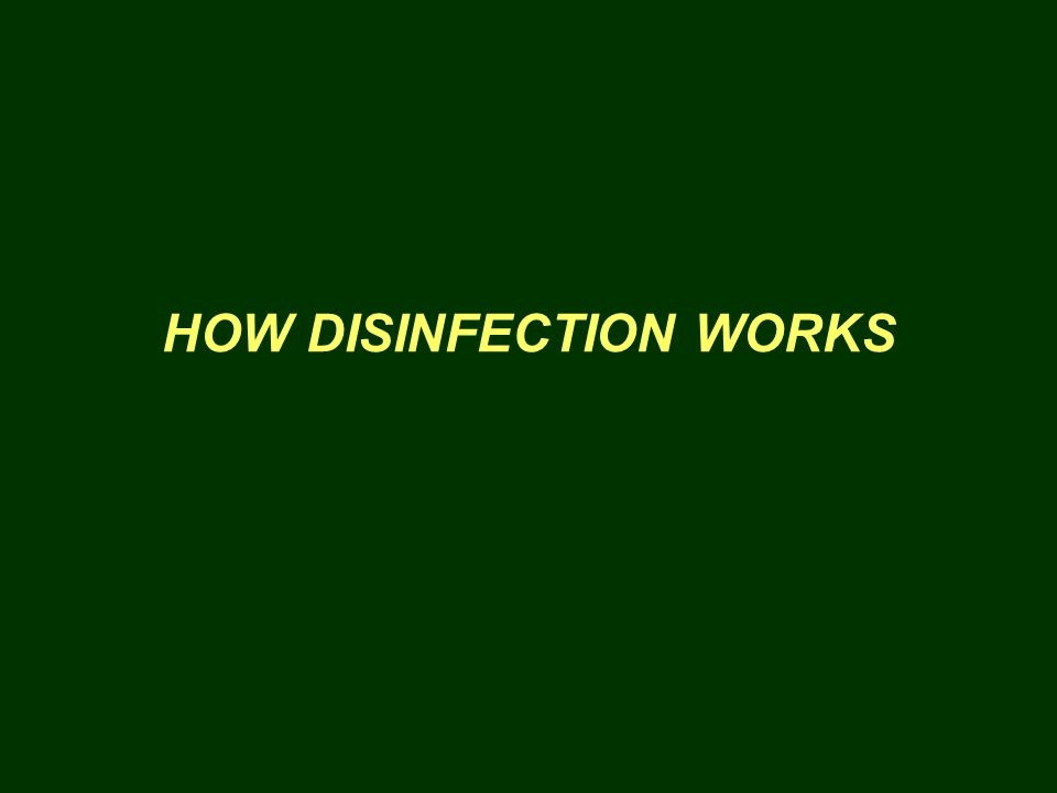 HOW DISINFECTION WORKS