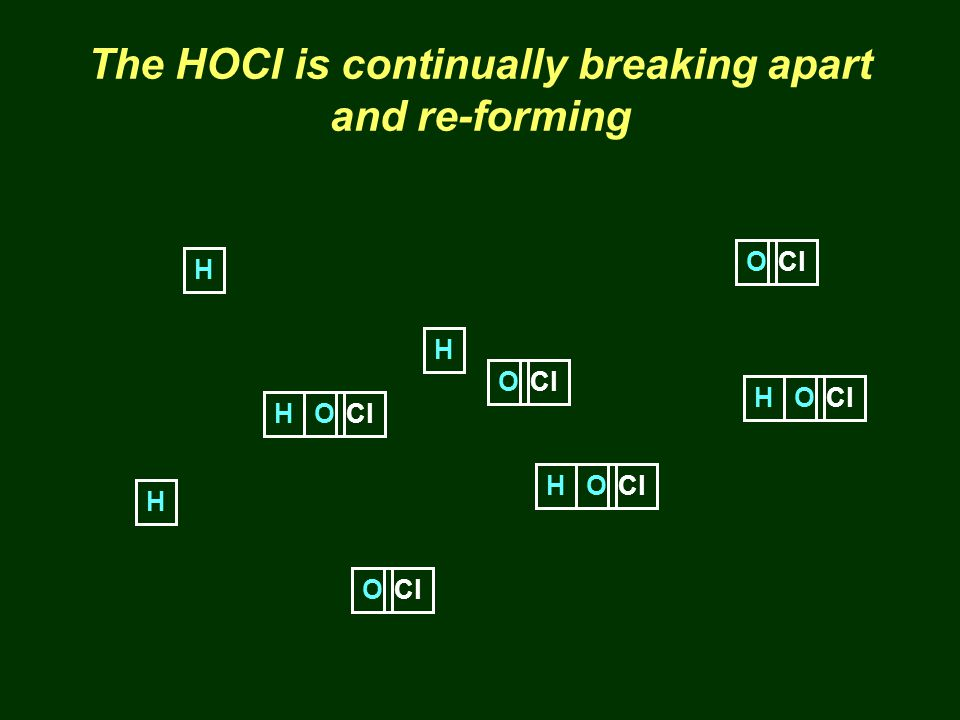 The HOCl is continually breaking apart and re-forming H OCl H O H O H O H O H O