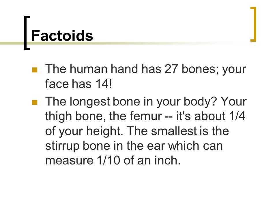 Factoids The human hand has 27 bones; your face has 14.