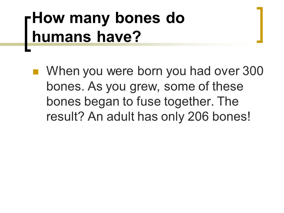 How many bones do humans have? When you were born you had over 300 bones. As you grew, some of these bones began to fuse together. The result? An adul