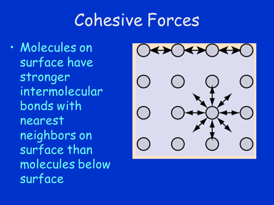Cohesive Forces Molecules on surface have stronger intermolecular bonds with nearest neighbors on surface than molecules below surface