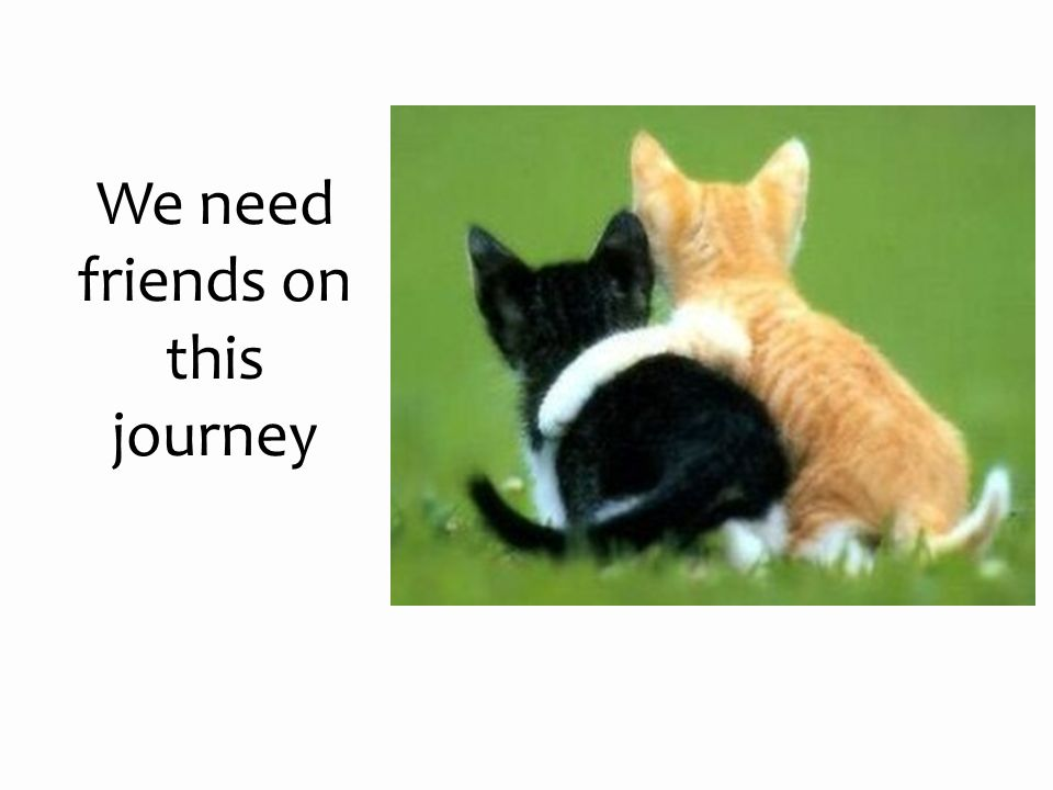 We need friends on this journey