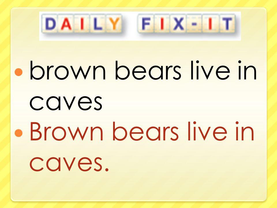 brown bears live in caves Brown bears live in caves.