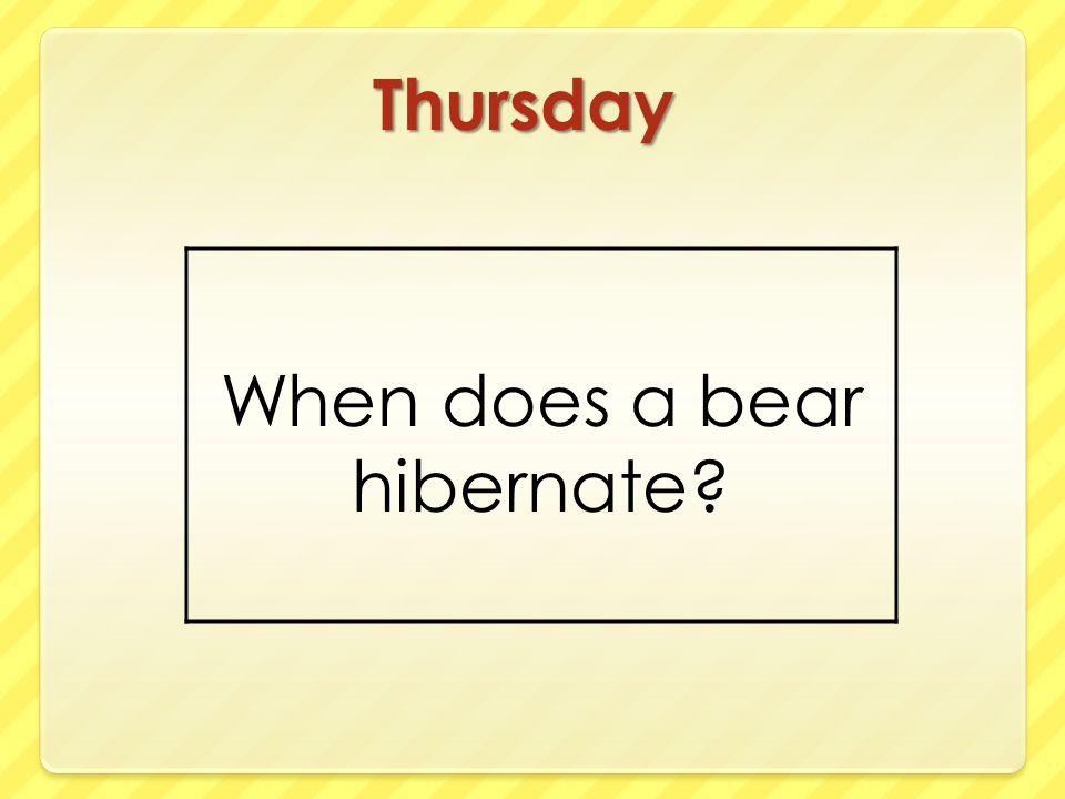 Thursday When does a bear hibernate?