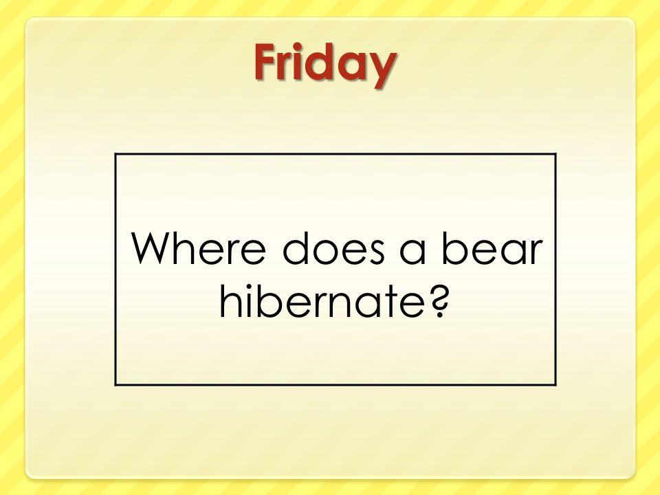 Friday Where does a bear hibernate?
