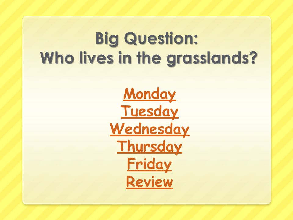 Big Question: Who lives in the grasslands? Monday Tuesday Wednesday Thursday Friday Review