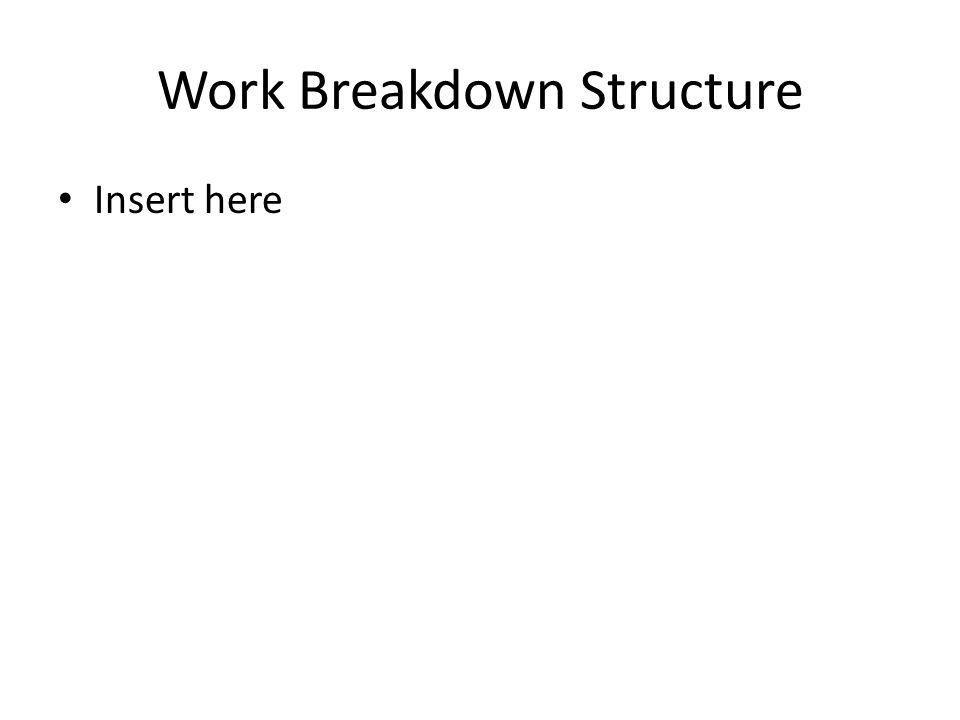 Work Breakdown Structure Insert here