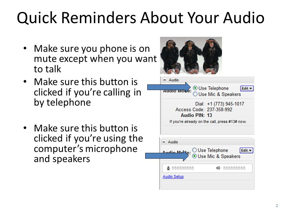 Quick Reminders About Your Audio Make sure you phone is on mute except when you want to talk Make sure this button is clicked if you're calling in by