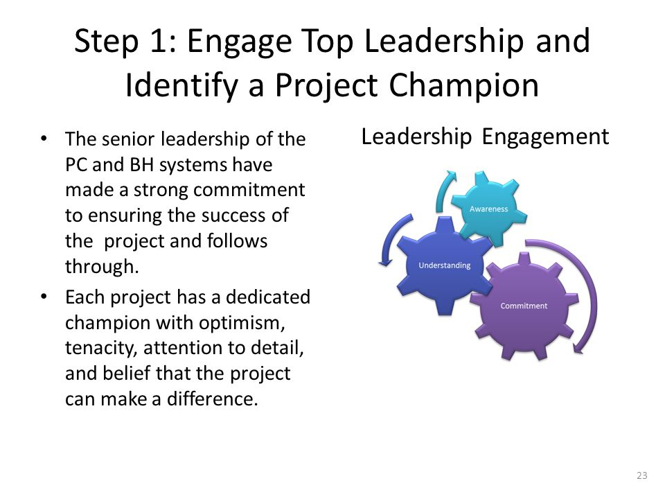 Step 1: Engage Top Leadership and Identify a Project Champion The senior leadership of the PC and BH systems have made a strong commitment to ensuring
