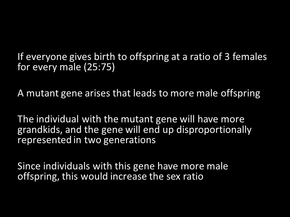If everyone gives birth to offspring at a ratio of 3 females for every male (25:75) A mutant gene arises that leads to more male offspring The individ