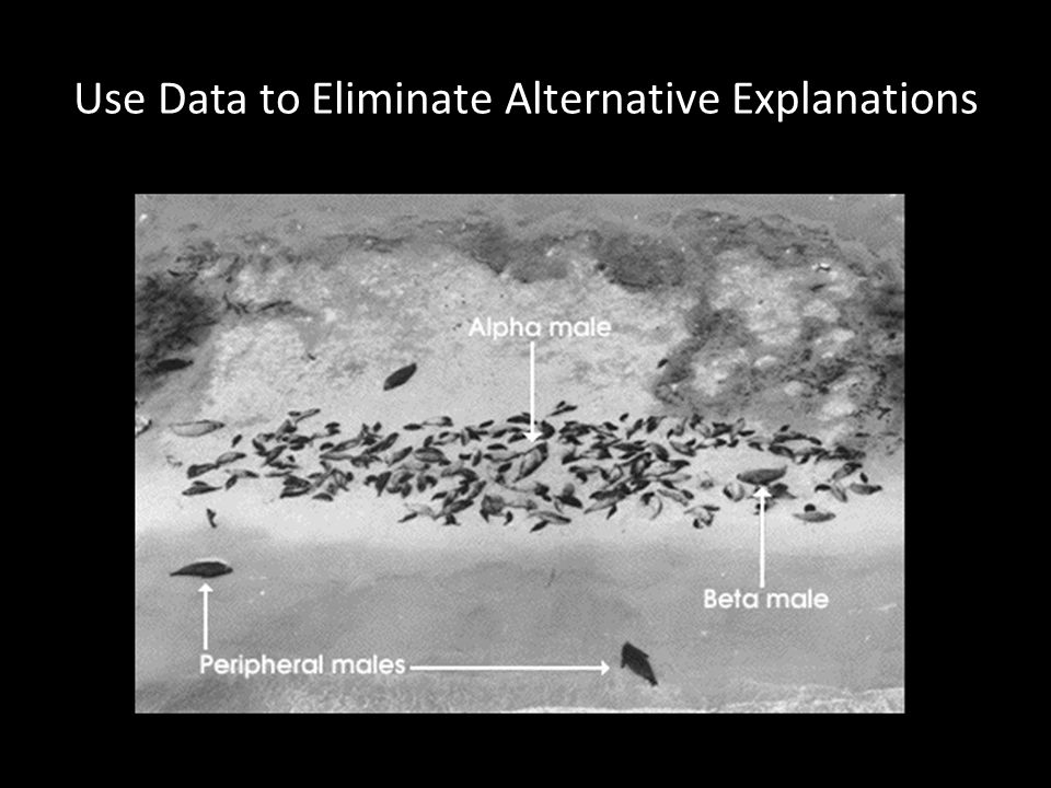 Use Data to Eliminate Alternative Explanations