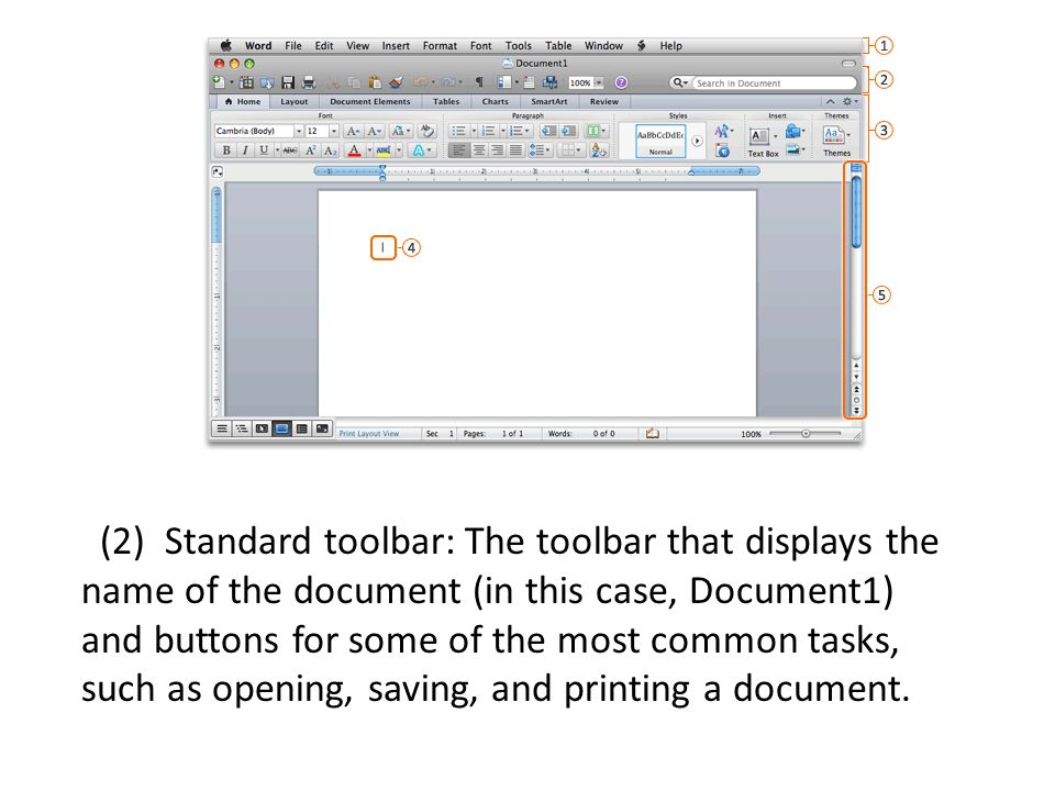 (2) Standard toolbar: The toolbar that displays the name of the document (in this case, Document1) and buttons for some of the most common tasks, such as opening, saving, and printing a document.