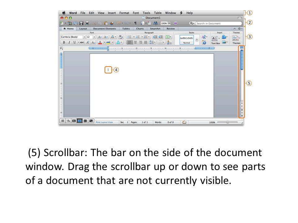 (5) Scrollbar: The bar on the side of the document window.
