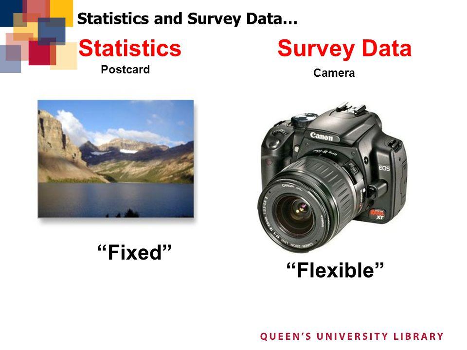 Survey DataStatistics Postcard Camera Fixed Statistics and Survey Data… Flexible