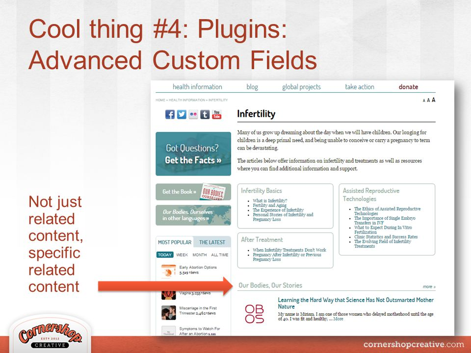 Cool thing #4: Plugins: Advanced Custom Fields Not just related content, specific related content