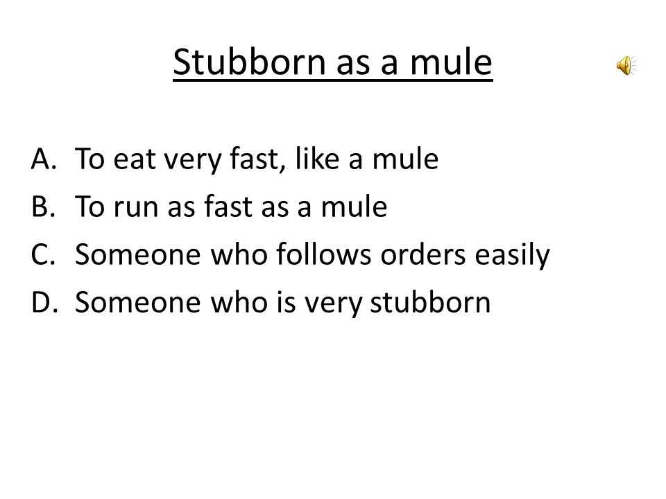 Stubborn as a mule A.To eat very fast, like a mule B.To run as fast as a mule C.Someone who follows orders easily D.Someone who is very stubborn