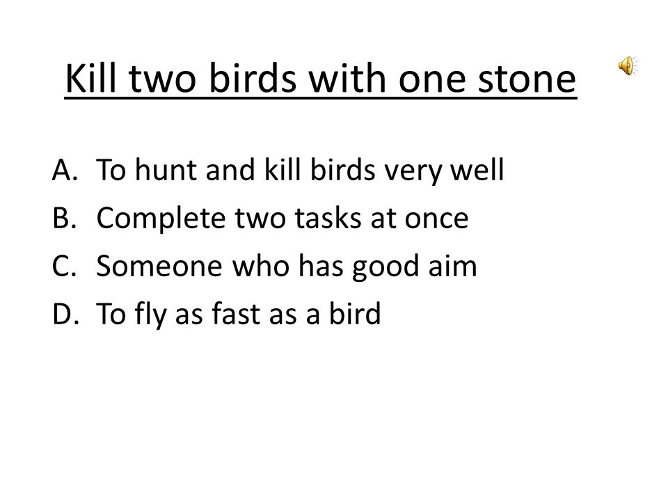 Kill two birds with one stone A.To hunt and kill birds very well B.Complete two tasks at once C.Someone who has good aim D.To fly as fast as a bird