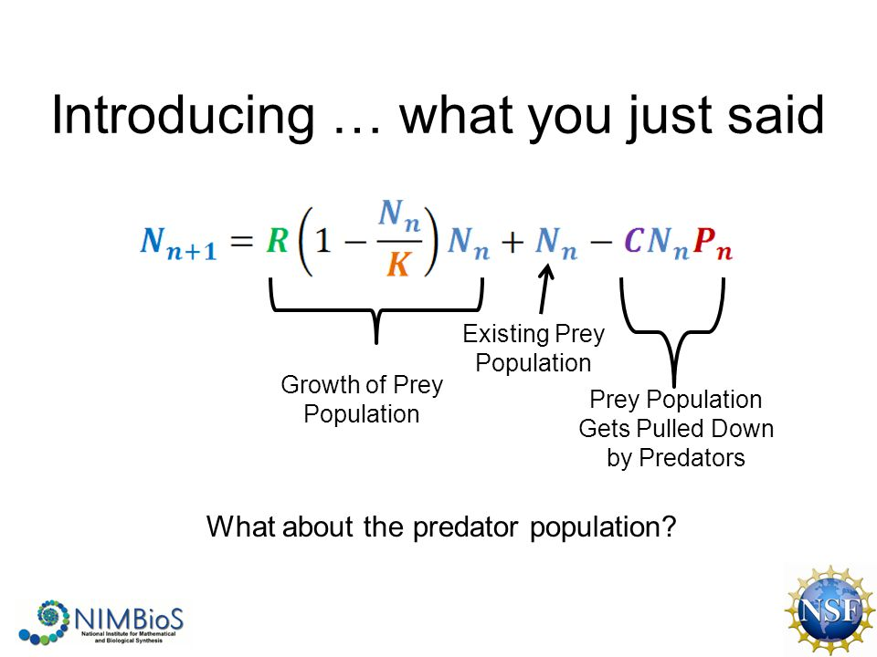 Introducing … what you just said Growth of Prey Population Prey Population Gets Pulled Down by Predators What about the predator population.