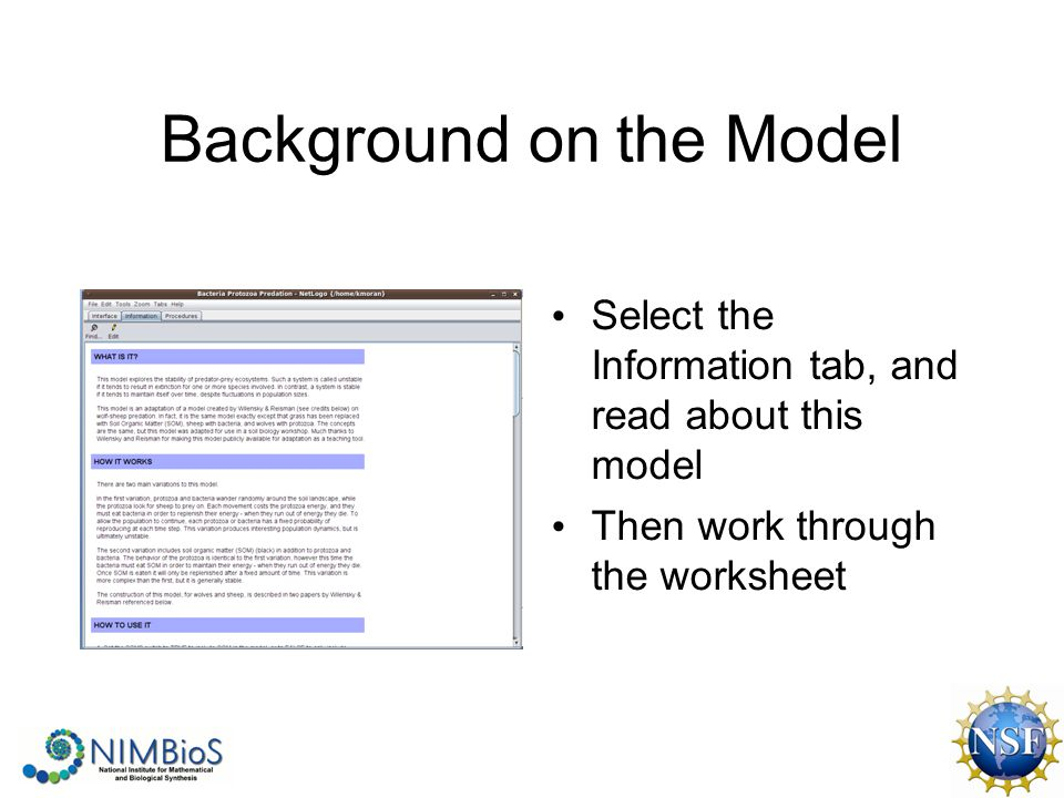 Background on the Model Select the Information tab, and read about this model Then work through the worksheet
