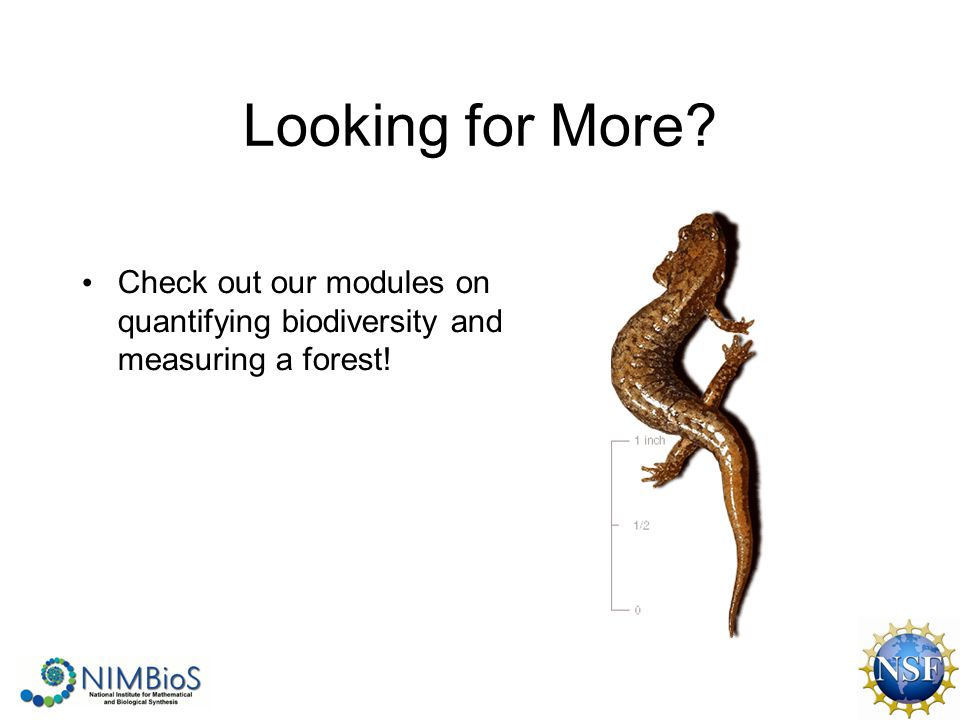 Looking for More Check out our modules on quantifying biodiversity and measuring a forest!