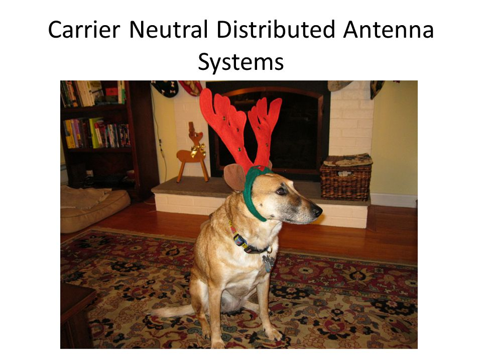 Carrier Neutral Distributed Antenna Systems