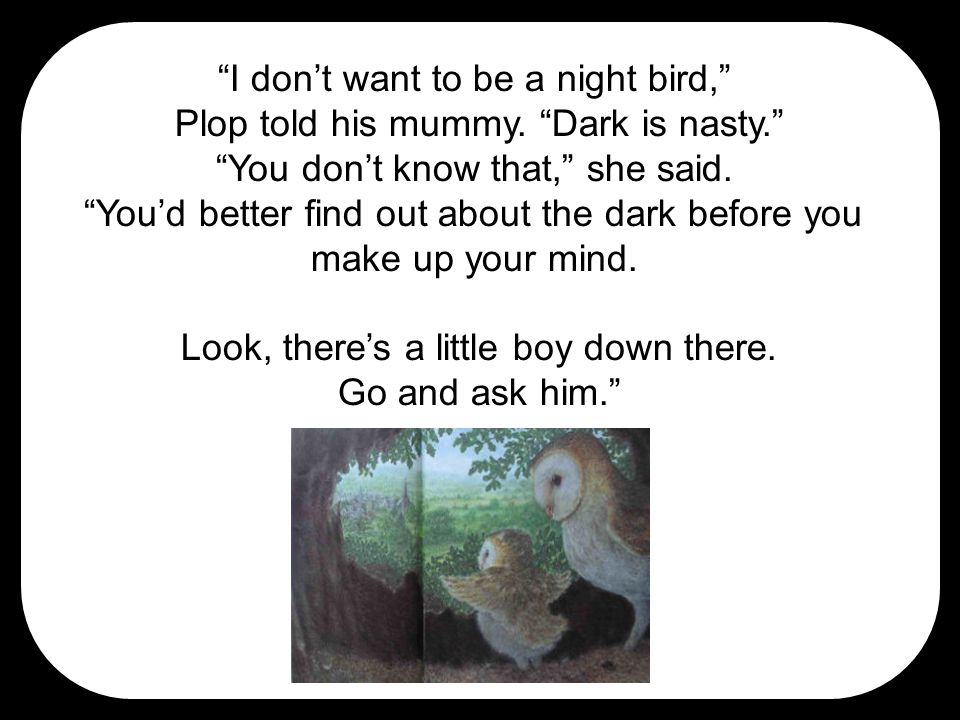 """""""I don't want to be a night bird,"""" Plop told his mummy. """"Dark is nasty."""" """"You don't know that,"""" she said. """"You'd better find out about the dark before"""